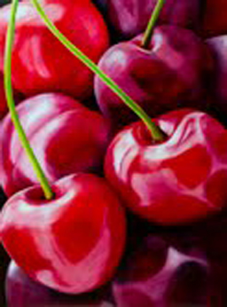 painting of cherries by artist cate fitz-gerald on artist marie jonsson harrisons art blog